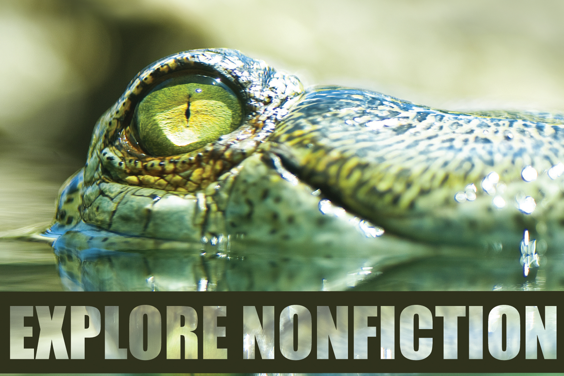 nonfiction books for kids and other activities