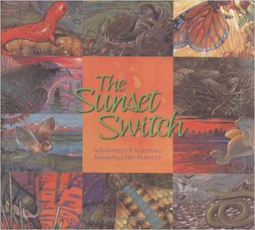 the_sunset_switch