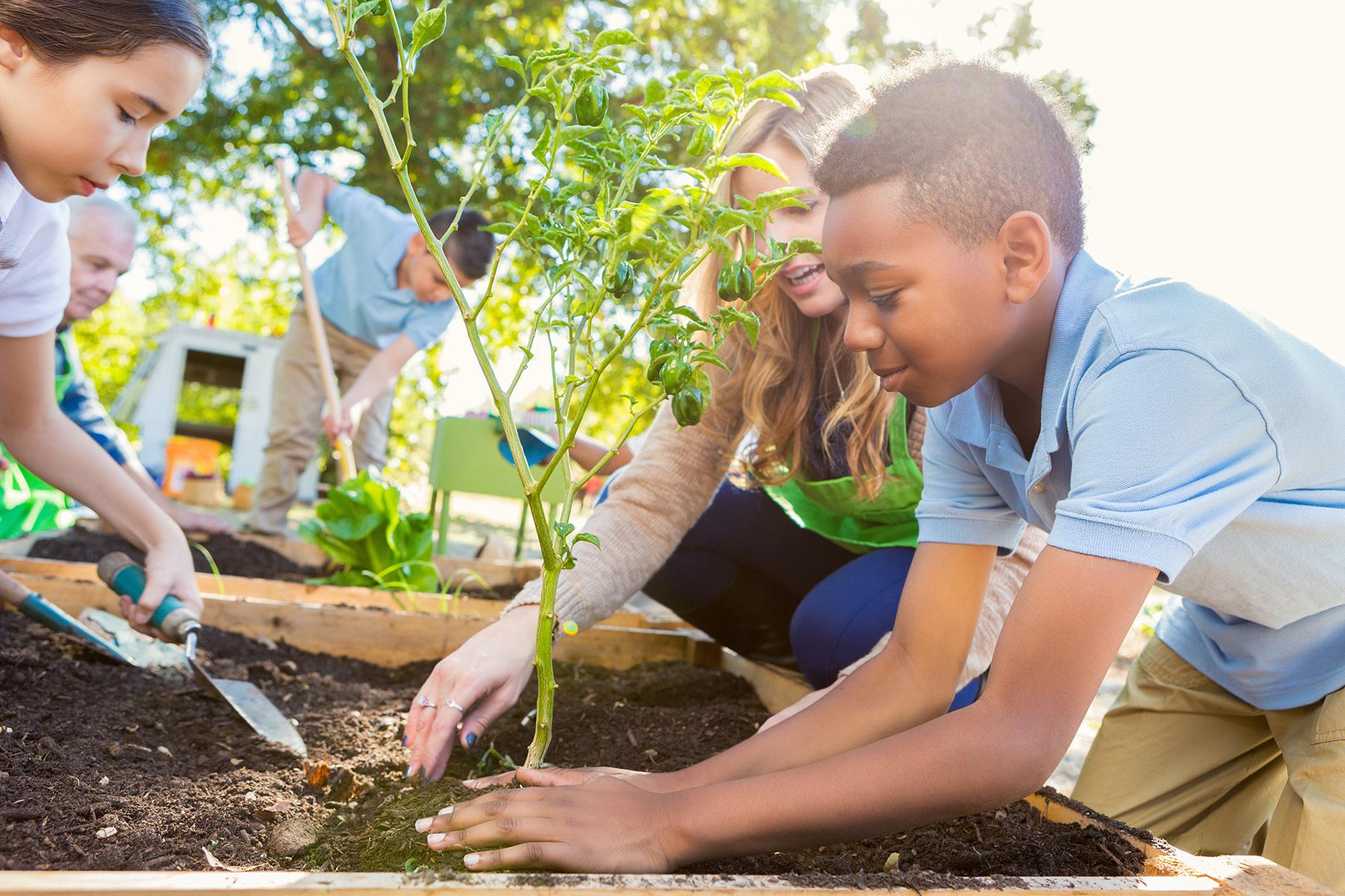 6 Volunteering Activities To Help Kids Build A Better World