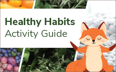 Healthy Habits Activity Guide