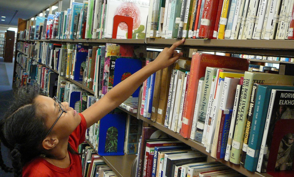 Engaging Nonfiction Library Displays and Activities