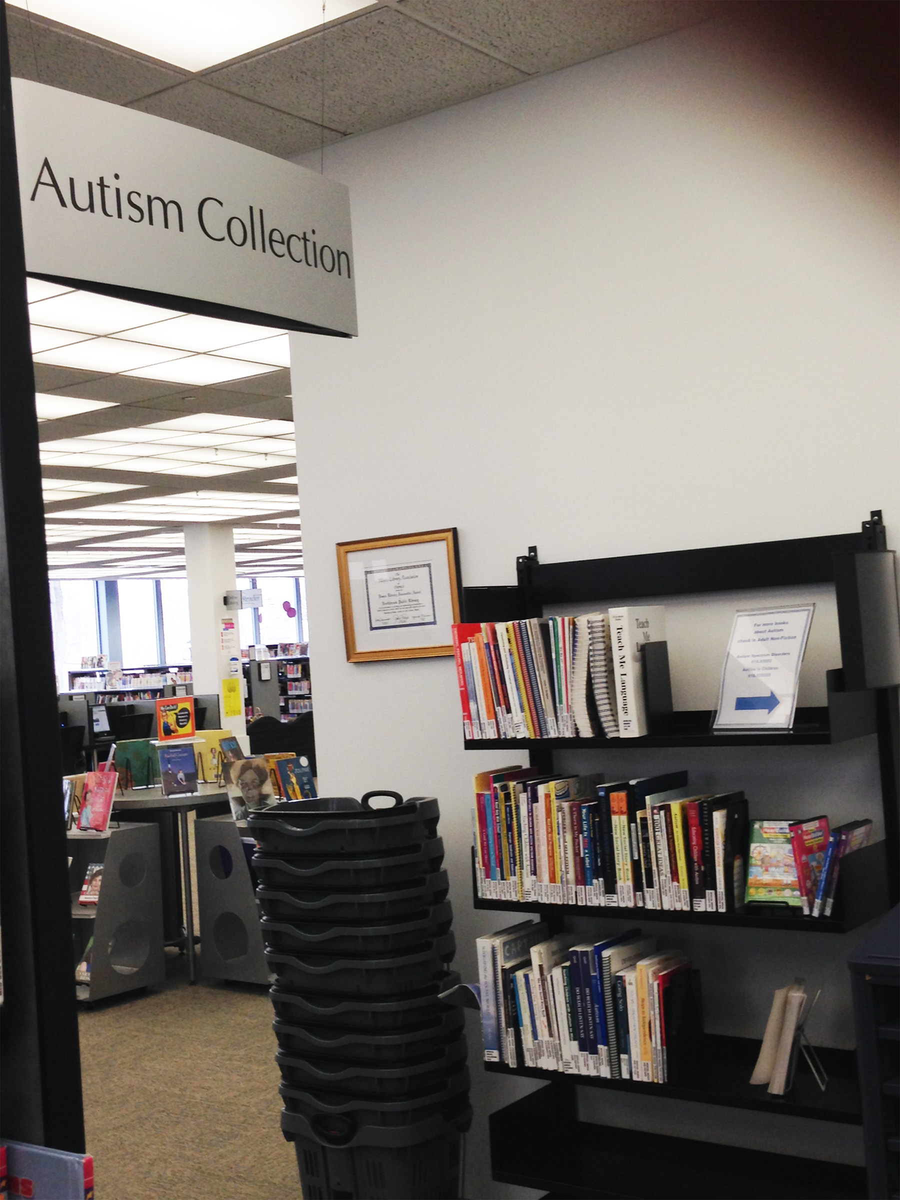 Autism-Collection-Partial-Northbrook-Public-0316