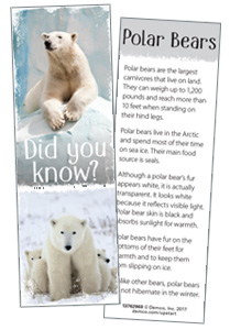 Fun Fact Polar Bear Bookmark