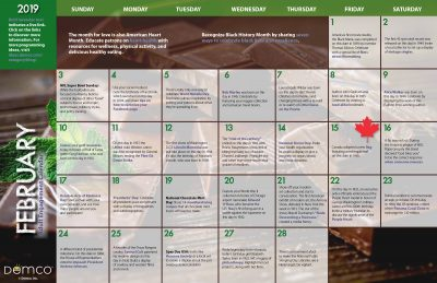 Adult Activity Calendar: February 2019
